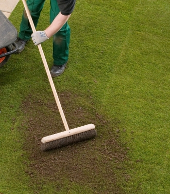 Lawn top dressing image